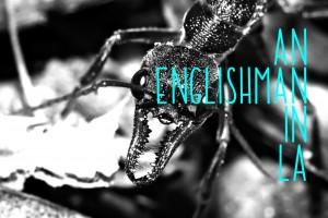Englishman LA